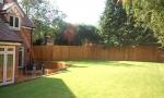 The Birches Garden1